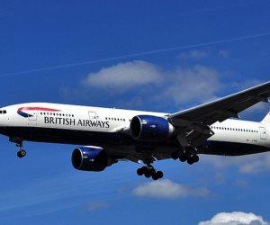 طائر يتسبب في إلغاء رحلة للخطوط الجوية البريطانية إلى نيويورك
