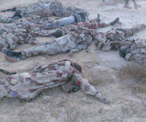 """مقتل 22 من إرهابيى """"داعش"""" فى عملية تحرير الريحانة بمحافظة الأنبار العراقية"""