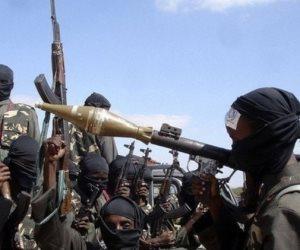 مسؤول أممي: القضاء نهائيا على جماعة بوكو حرام يستغرق سنوات رغم هزائمها العسكرية