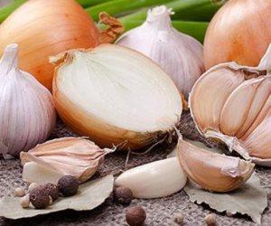 « في الربيع أو الخريف» لسه الوقت في ايدينا ..  طريقة زراعة الثوم في المنزل