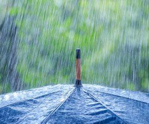 خبير مياه: أثيوبيا تستقبل  819 مليار متر مكعب من الأمطار سنوياً ولا تحتاج لحجز المياه للزراعة