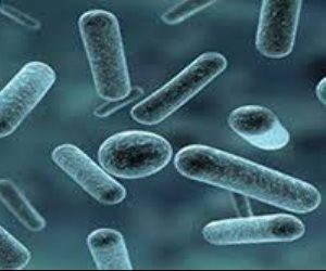 التحرك على مستوى العالم لمكافحة البكتريا التى تقاوم المضادات الحيوية