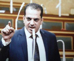 أمين سر طاقة النواب: زيارة الحكومة لكفر الشيخ «خطوة» لتنفيذ قرارات الرئيس