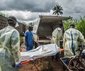 الكونغو تعلن تفشى إنفلونزا الطيور فى إيتوري