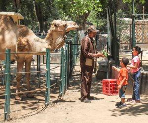 قبل زيارة حديقة الحيوان.. تعرف على تحذيرات الزراعة في عيد الأضحى