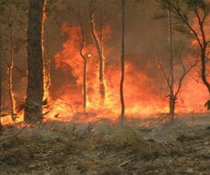 تكاليف مكافحة حرائق الغابات بأمريكا تجاوزت ملياري دولار في 2017