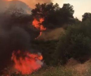 إخماد معظم بؤر الحرائق جنوب شرق فرنسا