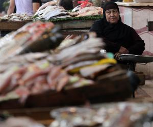 ننشر أسعار السمك اليوم الأربعاء 3-6-2020.. السمك المكرونة يبدأ من 19 جنيها للكيلو