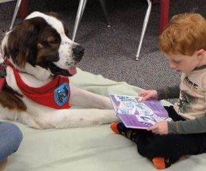 دراسة حديثة تجيب عن سؤال: لماذا أصبحت الكلاب صديقة للإنسان؟