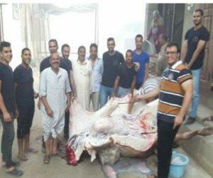مبادرة شبابية لمواجهة غلاء اللحوم بالمنصورة