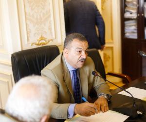 صحة البرلمان تناقش تشغيل المركز الطبي الشامل في مدينة المحلة