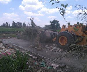 إزالة 220 حالة تعدي على أراضي الدولة في كفر الشيخ