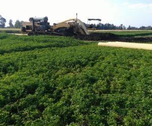 """""""زراعة كفر الشيخ """" تزيل 92 حالة تعد على الأراضى وتعلن توزيع 706 آلاف طن أسمدة"""