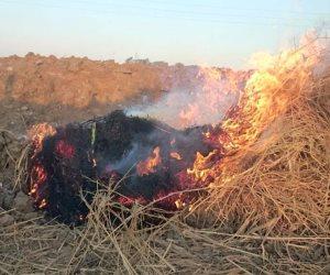 """""""السحابة السوداء"""" تهدد كفر الشيخ والمحافظ يطالب المواطنيين بالاستفادة من قش الأرز"""