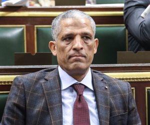 """برلماني يطلق حملة """"احنا المناطق الشعبية"""" لدعم السيسي في انتخابات الرئاسة"""