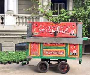 حي الزيتون يصادر «عربة فول» تستخدم مادة سامة في طهيه