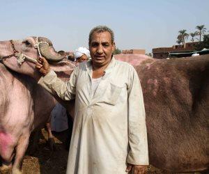 للحفاظ على ثرواتنا الحيوانية.. قوافل بيطرية لمواجهة طاعون المُجترات الصغيرة وأمراض الماشية