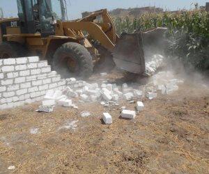 إزالة 11 حالة تعدي على الأراضي الزراعية وأملاك الدولة في حملة مكبرة بمركز البلينا