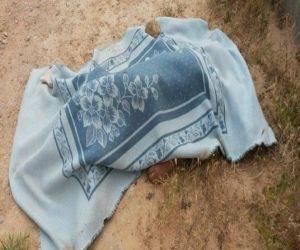 وفاة طالب على طريق منية النصر بالمنزلة لهذا السبب