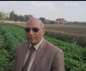 خبير وقاية النباتات يحذر: مصر قد تكون المحطة القادمة لحشرة جيش الخريف