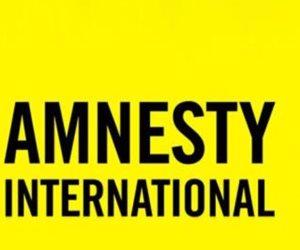 العفو الدولية «عرابة الفوضى».. المنظمة تحرض المخربين في 6 خطوات