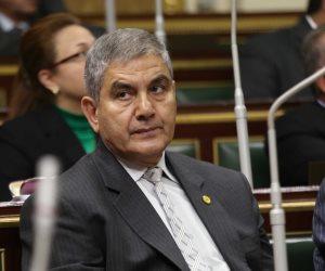 برلماني مهنئًا المرأة المصرية: لعبت دورًا بارزًا منذ ثورة يناير