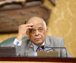 عبدالعال يرفع الجلسة العامة بعد استماع لوزيري الثقافة والآثار
