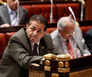 البرلمان يعلن إصابة عيد هيكل نائب المرج بفيروس كورونا