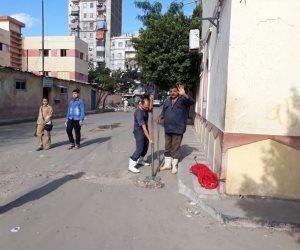 تطهير الشنايش والمطابق بمساكن جنوب المتراس وشارع القفال غرب الإسكندرية (صور)