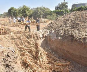 منظومة متكاملة للتعامل مع تلوث المخلفات الزراعية.. تعرف على تفاصيل القانون الجديد