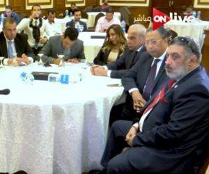 """القومي للإعاقة يكرم أبو هشيمة و""""حديد المصريين"""""""