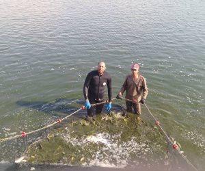 مصر تنتظر أكبر مشروع لإنتاج الجمبري والاستاكوزا.. قريبًا 1.9 مليون طن سمك إنتاج مصري