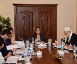 """تفاصيل اجتماع اللجنة التنفيذية لصندوق """"تحيا مصر"""" لبحث دعم مخطط تنمية بئر العبد"""