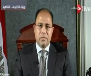 المتحدث باسم وزارة الخارجية يكشف خطوات الدول العربية بعد الفيتو الأمريكي