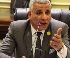 نائب يكشف دور الإخوان في محاولة تشويه الانتخابات الرئاسية