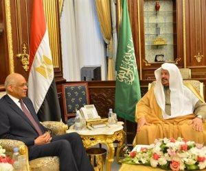 عبدالعال: تشكيل جمعية الصداقة المصرية السعودية بمجلس النواب (صور)