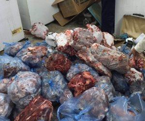 الصحة: إعدام نصف طن أغذية فاسدة بـ 24 ناديا رياضيا في 7 محافظات