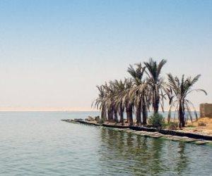 أبرز ملامح مشروع «الحزام الآمن» في بحيرة قارون