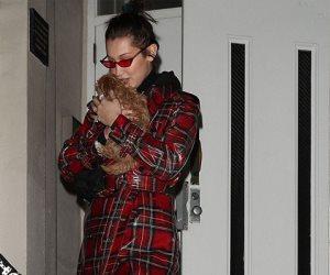 """""""Too cute"""".. بيلا حديد برفقة جرو فى نزهة نيويورك (صور وفيديو)"""