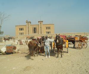 """استراحة الملك فاروق في الأهرامات: """"مبولة الجمال والخيول"""" (صور)"""