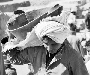 """10 مجالات """"تتصدرها الزراعة"""" تفضلها العمالة المصرية.. تعرف على التفاصيل"""