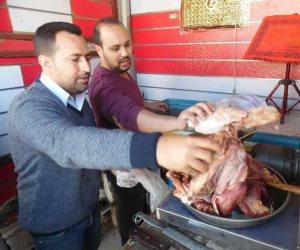 ضبط لحوم وفسيخ غير صالح وإعدام 70 كيلو سلع غذائية غير صالحه بكفر الشيخ (صور)