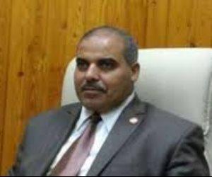 نائب وزير الكهرباء القيادة السياسية بذلت جهودا مضنية فى القضاء على أزمة انقطاع التيار