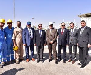 استراتيجيات تأمين توفير وتنويع مصادر الطاقة بين الأردن ومصر