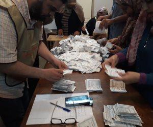 نتائج أولية لانتخابات الرئاسة 2018..  6 لجان عامة بالفيوم: 475846 للسيسى و16656 لموسى