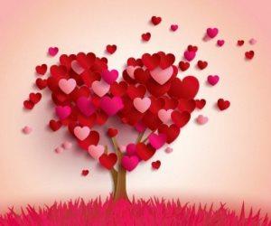 «الطرف الأخر مش من ممتلكاتك».. الفرق بين الحب والهوس
