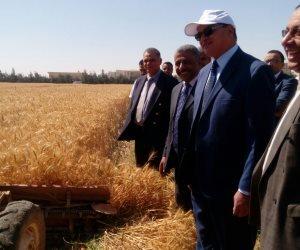 بدء موسم حصاد القمح بكلية الزراعة جامعة سوهاج (صور)
