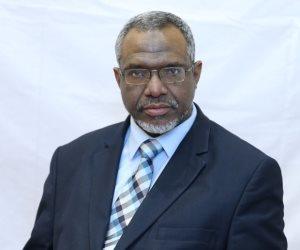 وزير سوداني يؤكد توافر الإرادة السياسية لاستكمال الربط الكهربائي مع مصر