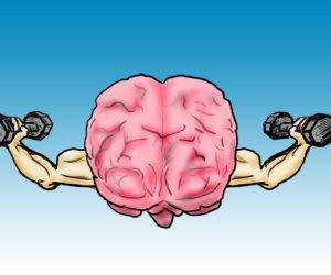 دراسة: المخ يظل ينتج خلايا الذاكرة خلال العقد الثامن من العمر