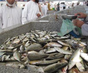 ضبط 103 أسماك بحريه مهدد بالإنقراض محظورة الصيد  محنطه داخل بازار بشرم الشيخ